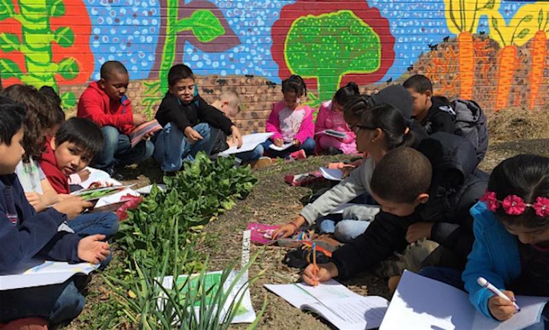 educadora-utiliza-horta-como-metodo-aprendizagem-ganhou-atencao-alunos-mais-dificeis-escola
